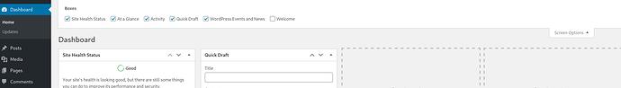 Screenshot_2020-08-21 Dashboard ‹ Just another WordPress site — WordPress(1)